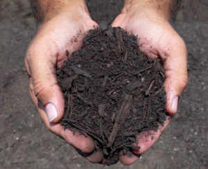 1/2 inch landscaper's compost in hands close up