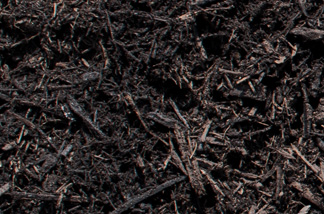 close up of dark composted mulch