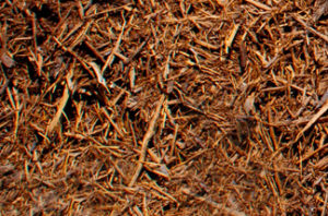 close up of double shredded cedar mulch