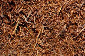 close up of double shredded cedar mulch