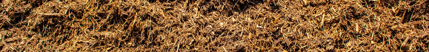 close up wide shot of double shredded native