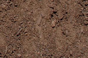 New Earth Compost - Rose Azalea Mix