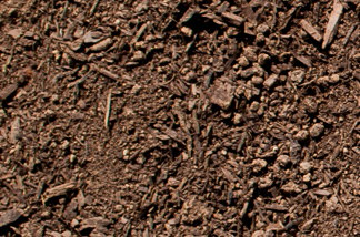 New Earth Compost - Garden Soil