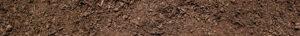 close up wide shot of garden soil