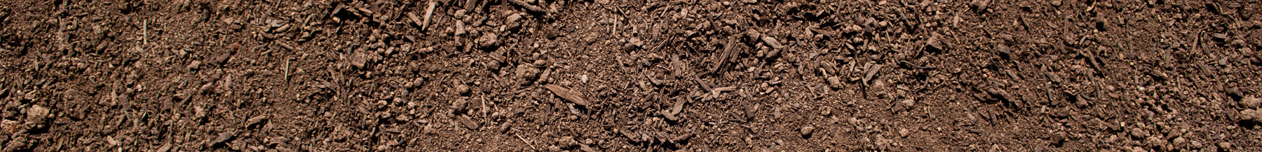 close up wide shot of garden soil