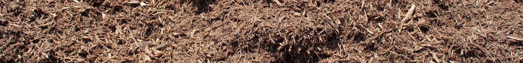 close up wide shot of kiddie cushion mulch