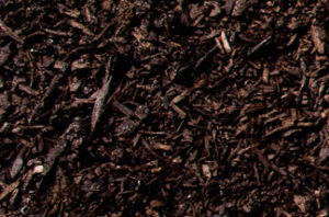 New Earth Compost - Manure Compost