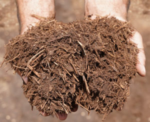 new-earth-cedar-mulch-hand