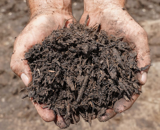 new-earth-humus-compost-hand