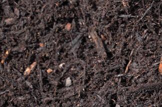 new-earth-premium-hardwood-mulch