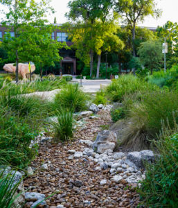 New Earth Compost - Witte Museum Hardscape