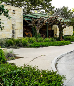 New Earth Compost - Witte Museum