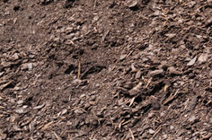 New Earth Compost - Pine Humus Compost