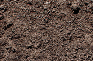 close up of topdressing