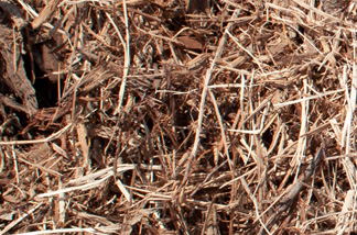 close up of single grind cedar mulch