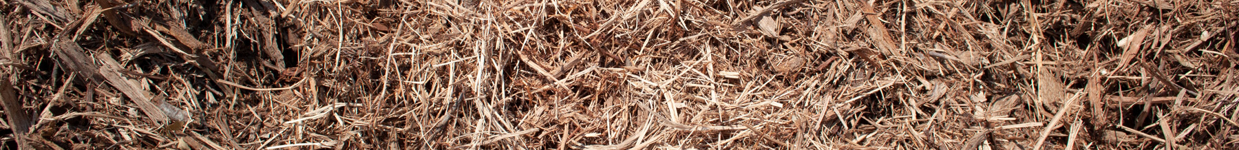 close up wide shot of single grind cedar mulch