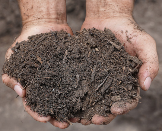 new-earth-topsoil-hand